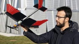 Diseñan un dron con plumas que vuela casi como un pájaro