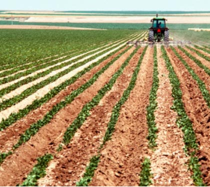 El Consell destinará 24 millones de euros a las ayudas para la suscripción de seguros agrarios