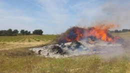 Las quemas agrícolas estarán prohibidas entre el 13 y el 24 de abril