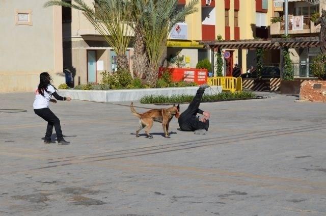 Ciudadanos propone un programa con perros para la protección de víctimas de violencia machista