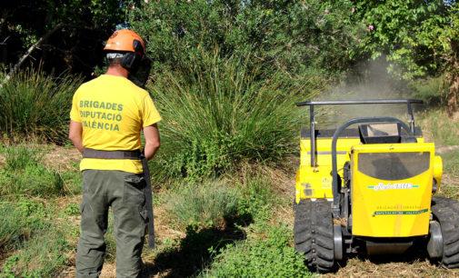 Las brigadas forestales de Divalterra acondicionan barrancos y cauces del Rincón de Ademuz