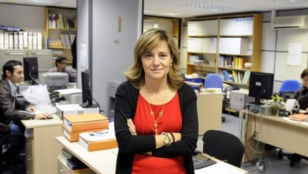 """Bastidas: """"Los caprichos de Sánchez con los vehículos diésel hará más pobres a dos millones de valencianos"""""""