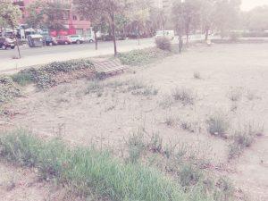 Abandono municipal de los parques y la jardinería en Valencia