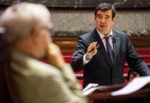 Fernando Giner exige coordinación urgente entre Sanidad y Jardines para el control de plagas