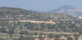 AVA-ASAJA denuncia los incumplimientos del Botanic y el fin de ayudas
