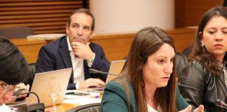 Ana Vega, VOX pide toda la documentación de las subvenciones de la Generalitat Valenciana a las empresas del hermano de Puig