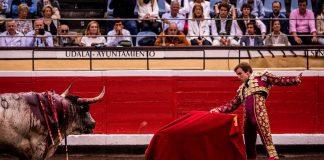 """Román Collado: el Maestro desde el confinamiento """"mis preocupaciones son las mismas que las del resto de los españoles"""""""
