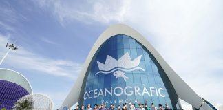 Valencia Basket cambia su rutina con una visita al Oceanogràfic