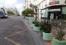 Los maceteros viajeros de la Plaza del Ayuntamiento provisional se mudan para la nueva obra