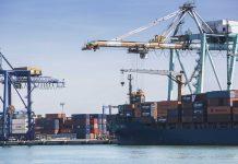 Valencia reafirma su liderazgo como primer puerto español con mejor conectividad según Naciones Unidas