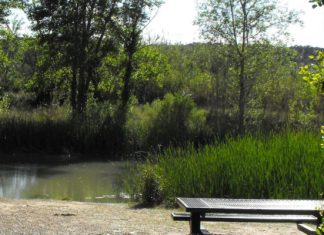 Benaguasil y Villamarchant restringirán el acceso de personas al Parque Natural del Turia