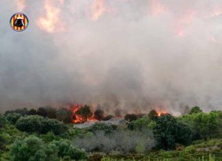 Tres incendios forestales próximos ponen en jaque a los bomberos